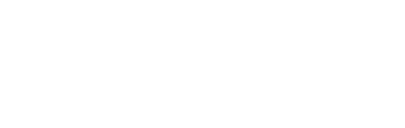 IOTA Foundation Logo White
